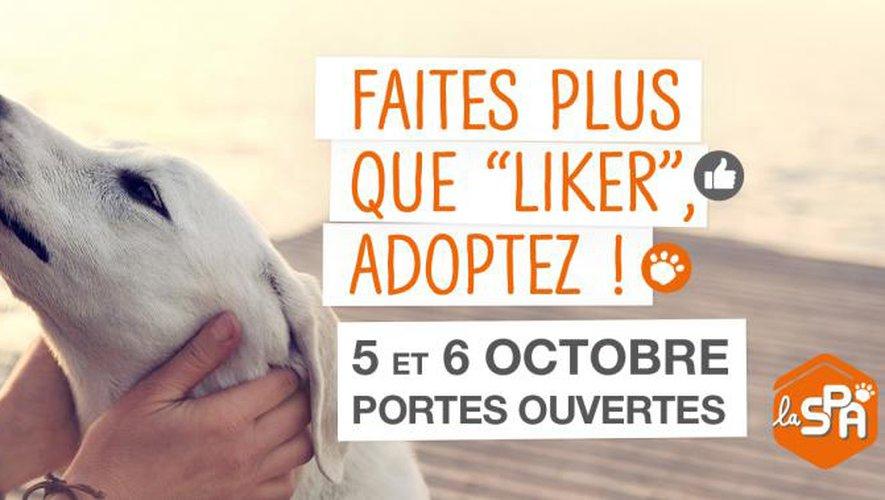 « Faites plus que liker, adoptez ! »